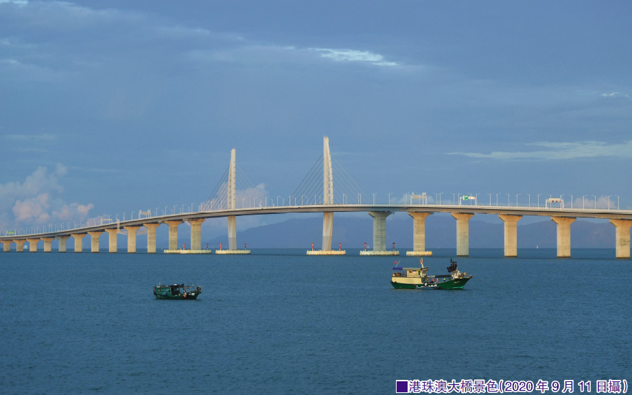 如何破解港珠澳大桥冷清之困?杨允中:港珠澳大桥应重新定位发挥综合效益