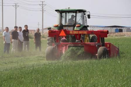 蒙牛乳业:强引领固根基,党建项目激发不竭红色生产力