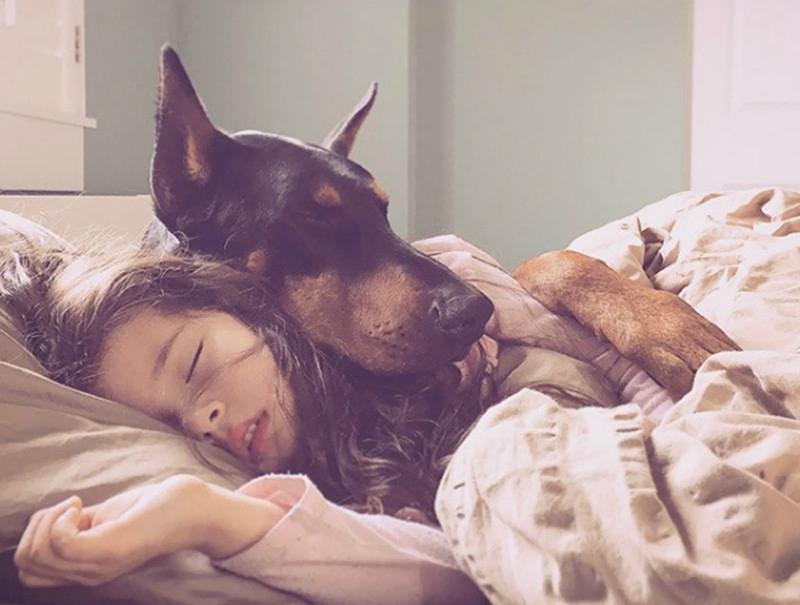 """原来""""和狗睡""""的好处这么多,怪不得大家都喜欢养狗"""
