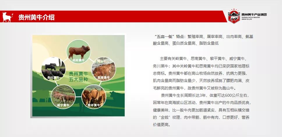 """画家石金库先生被贵州黄牛产业集团聘请为""""乡村振兴文化大使"""""""