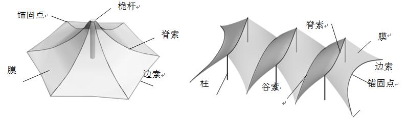 膜结构有哪些类型?