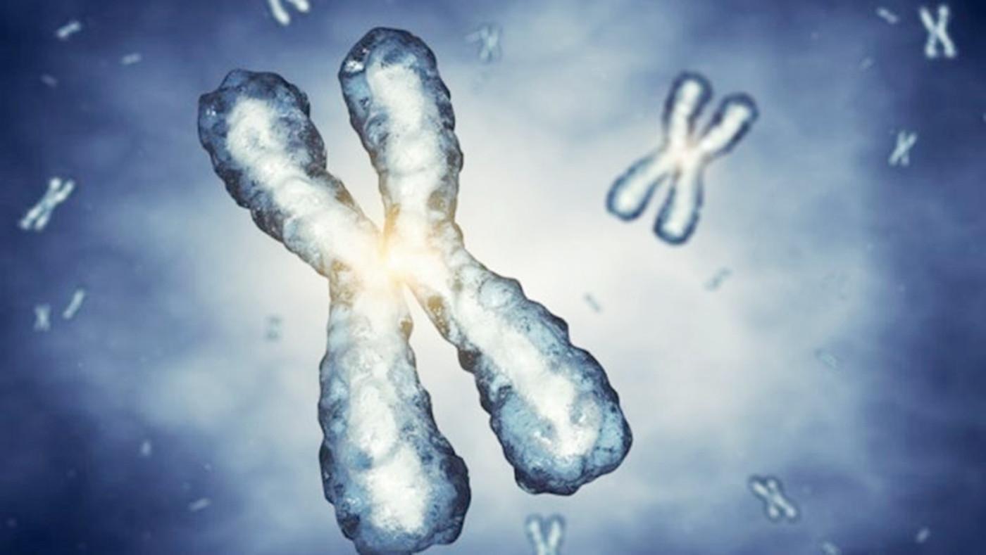 胎儿无创基因检测是什么意思啊,无创DNA费用高吗?