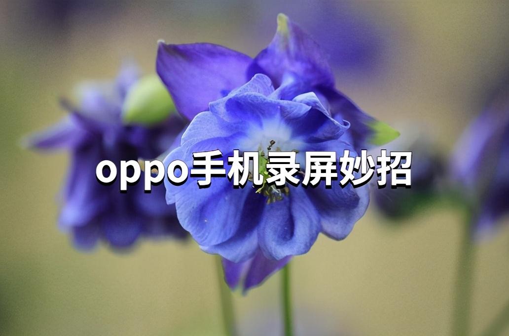 oppor11怎么录屏(oppor11自带录屏在哪里)