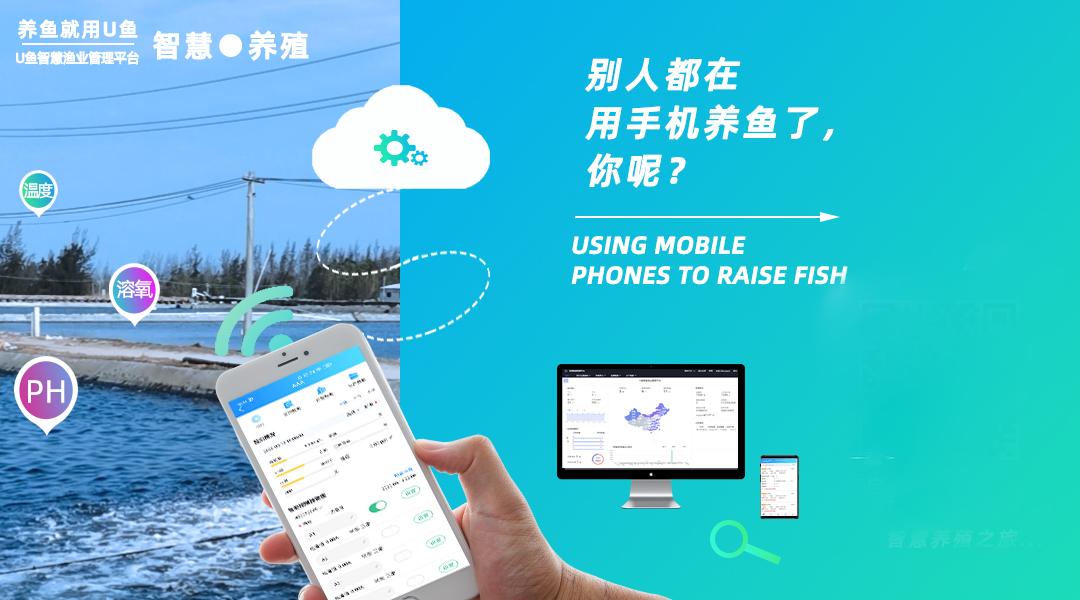 U鱼智慧渔业系统,让水产养殖更简单高效
