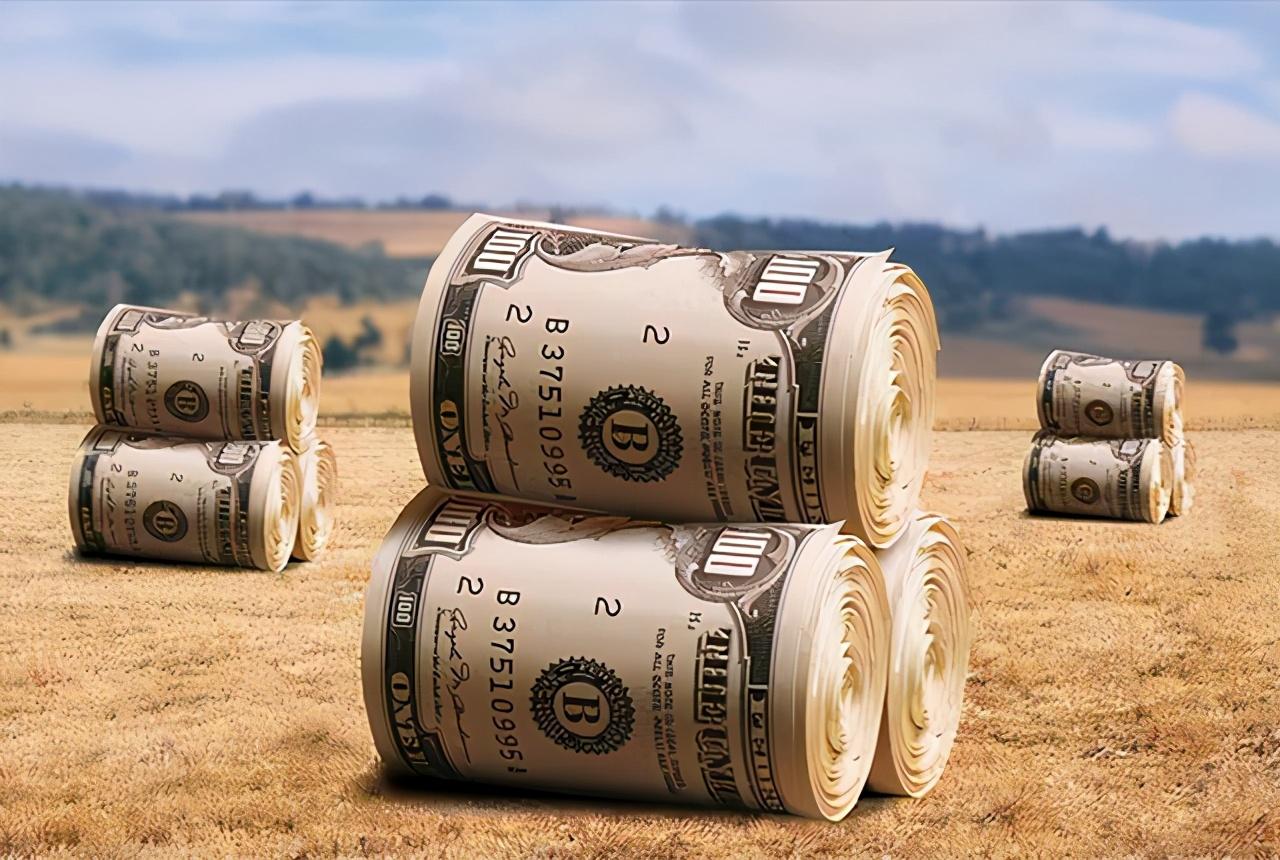 """粮价要「变天」?国际粮价大涨后国内会""""跟""""吗?"""