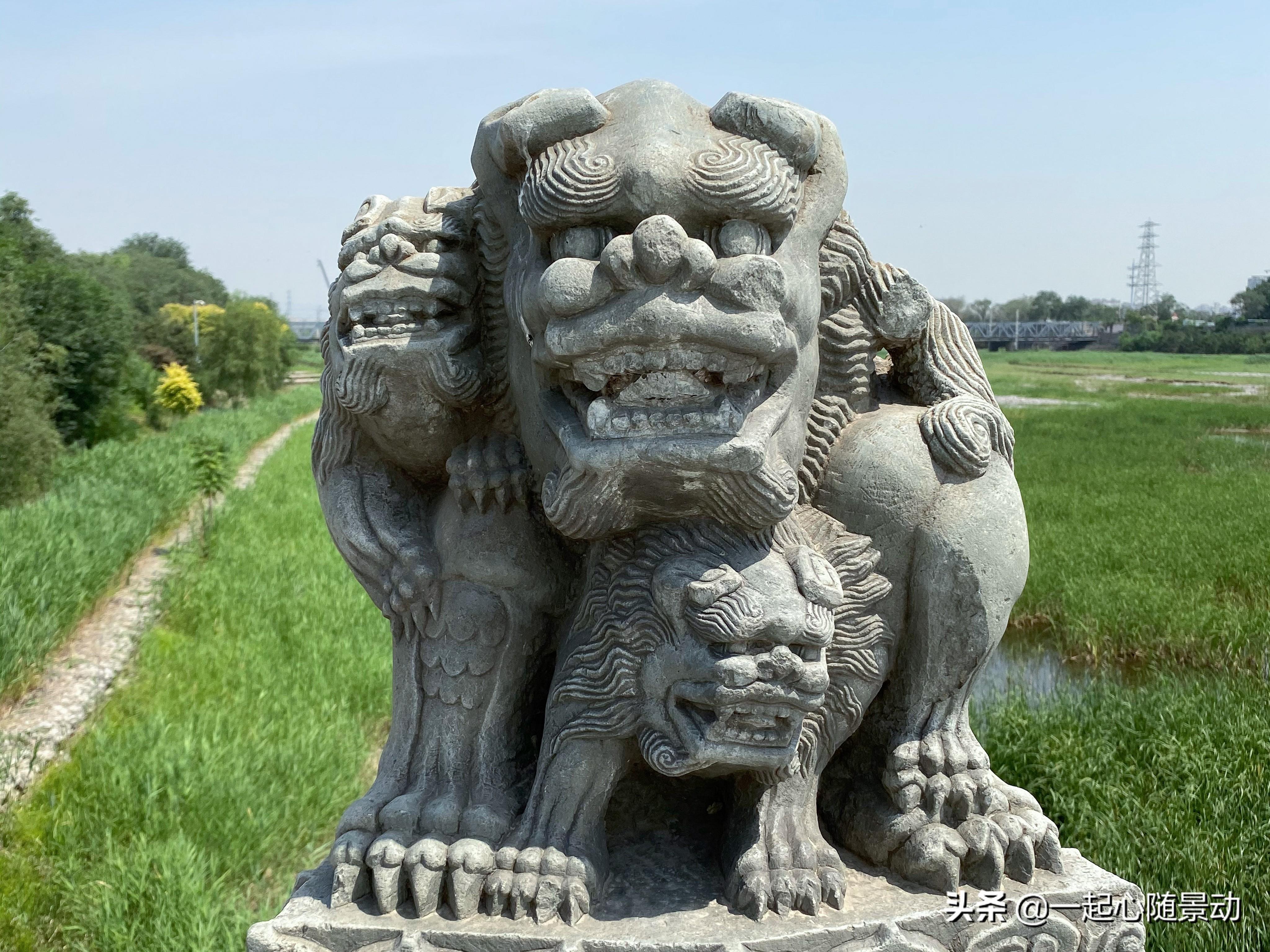 盧溝橋上的石獅子明明不會跑,為什麼還數不清?
