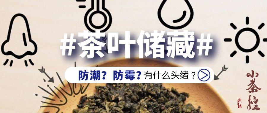 不同发酵储藏难度各异 茶叶防潮防霉请看这里