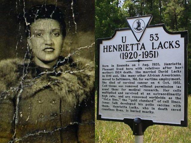 黑人妇女70年前留下的细胞,如今已经繁殖了18000代,遍布全世界