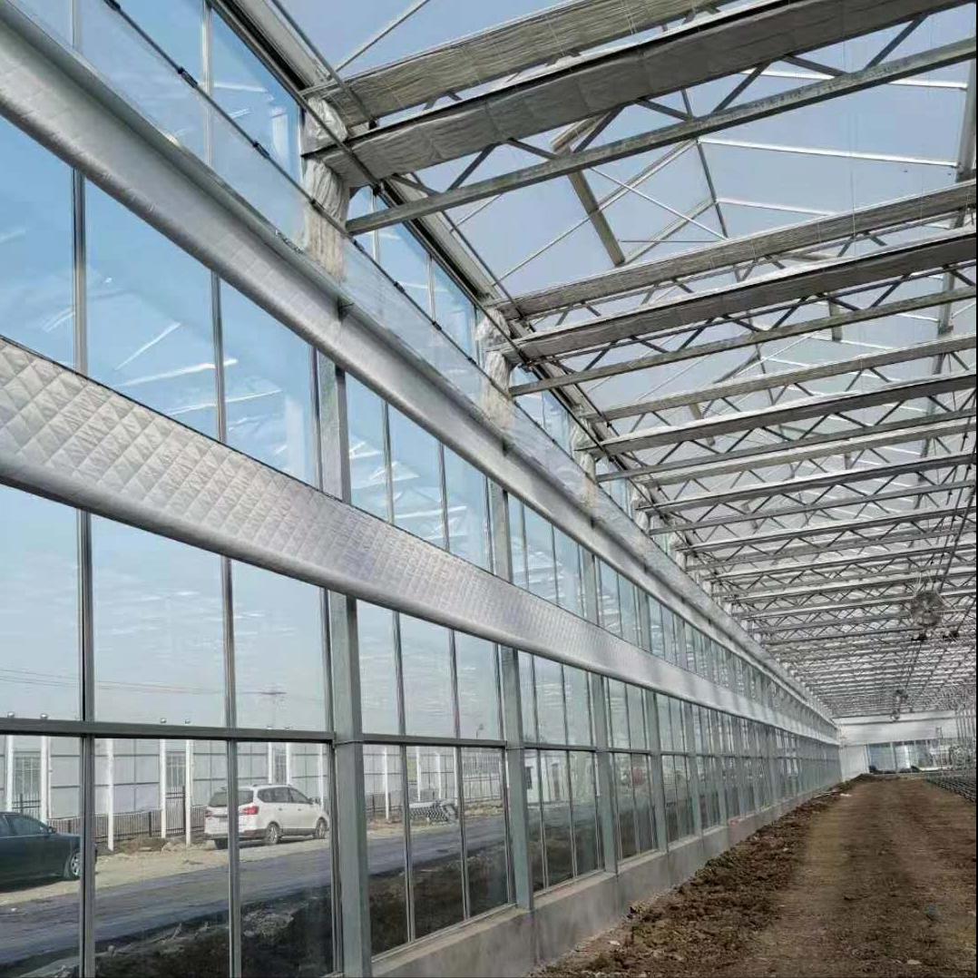 为什么一些地区不能照搬荷兰型玻璃温室大棚