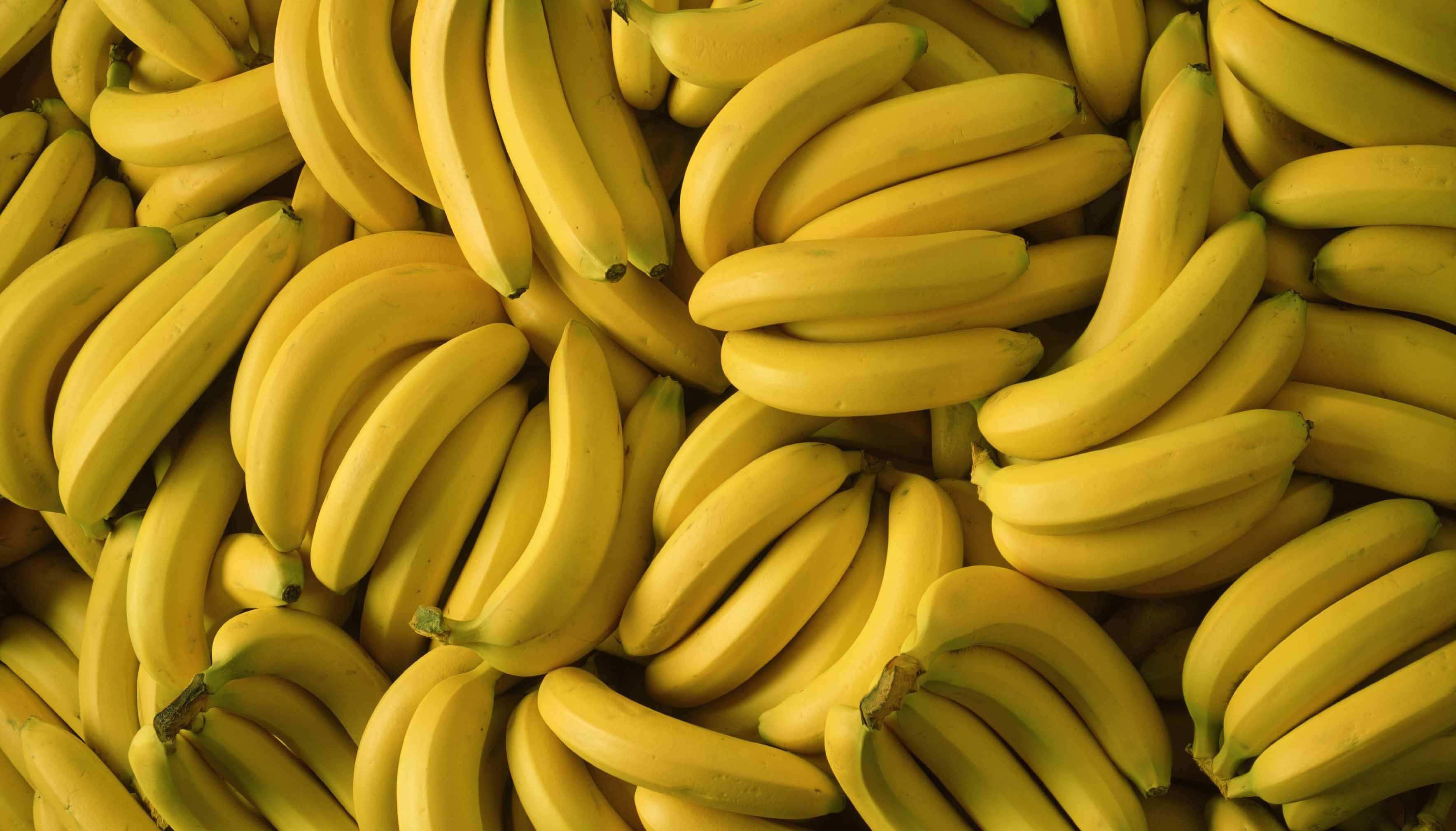 """入冬后,5种被称为""""湿气王""""的水果别再吃了!小心体内湿气加重"""
