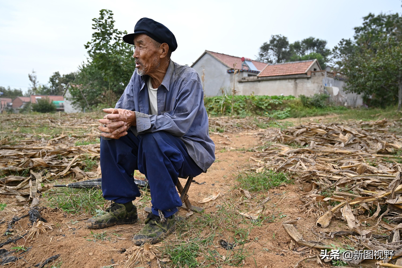 82岁大爷知足生活,上午喝茶下午放羊,年轻时480元盖房娶妻