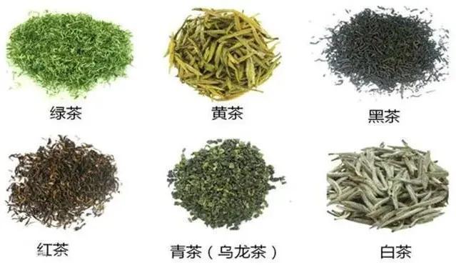 """喝茶益健康,助力长寿,108岁的茶学界泰斗,堪称""""长寿标本"""""""