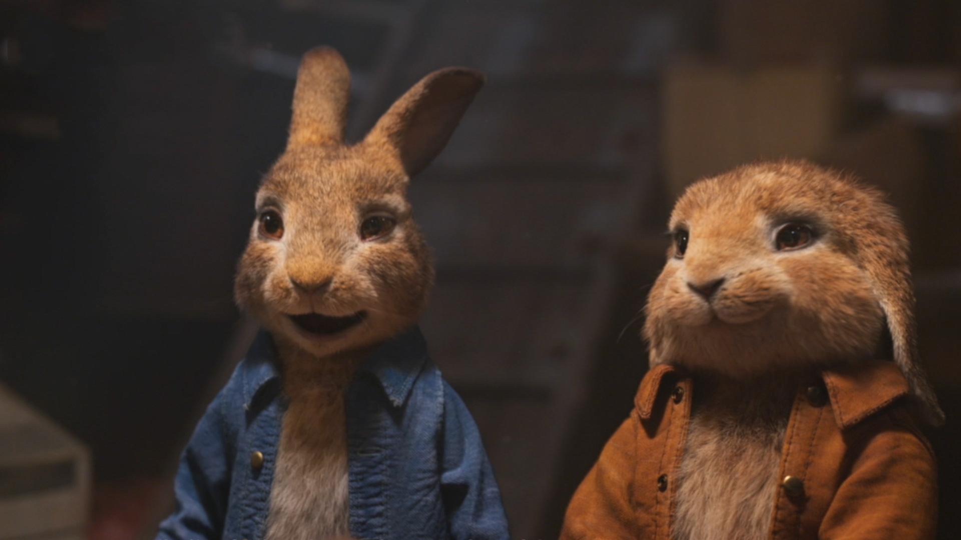 千万别被《比得兔2》给骗了,澳大利亚对待兔子可没那么好