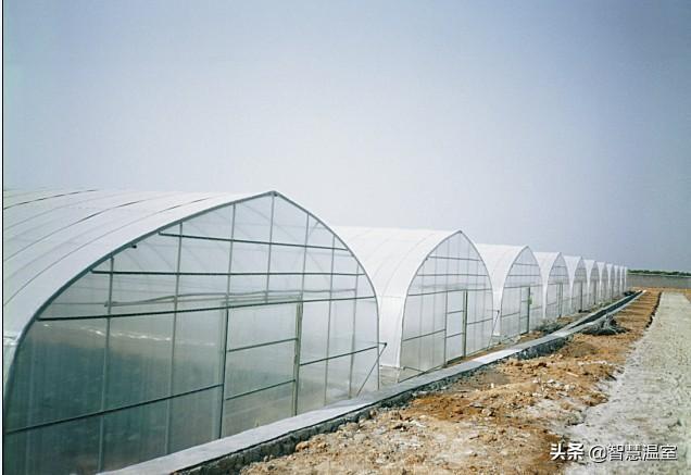 温室大棚覆盖材料优缺...