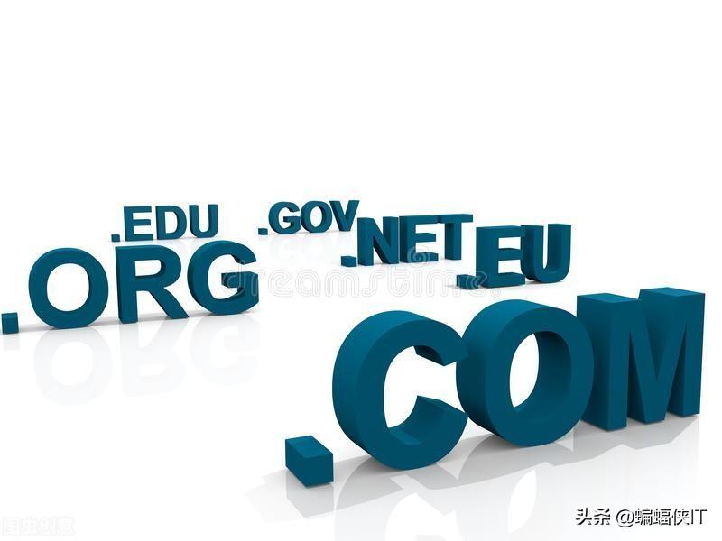 新站SEO,如何选择域名和更新周期?-老谭资源网