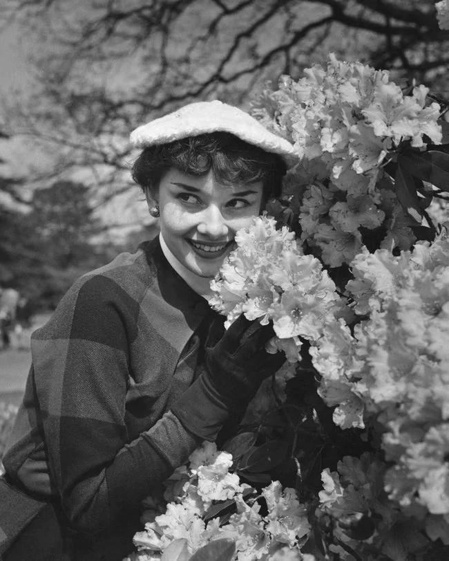 老照片:27张罕见的,奥黛丽·赫本照片