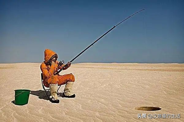 4个钓鱼界最惊奇的冷知识,冷到你不敢相信