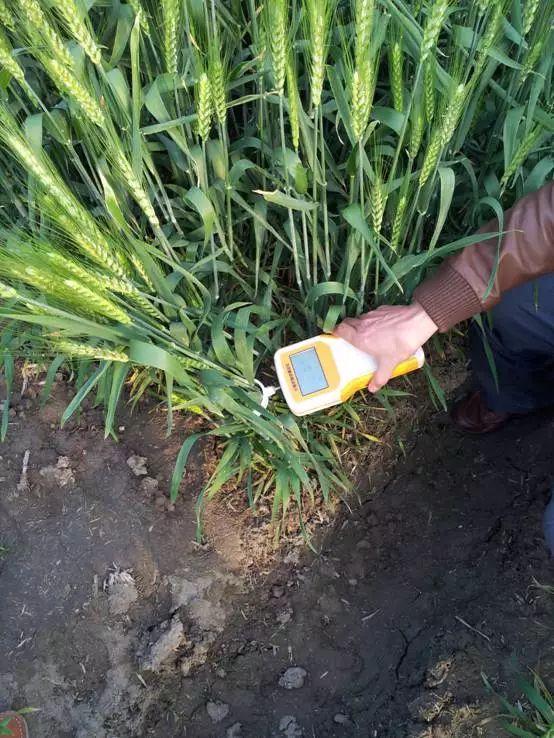 干智慧农业挣不挣钱,看这20大黑科技(下)——蜂窝农业物联网