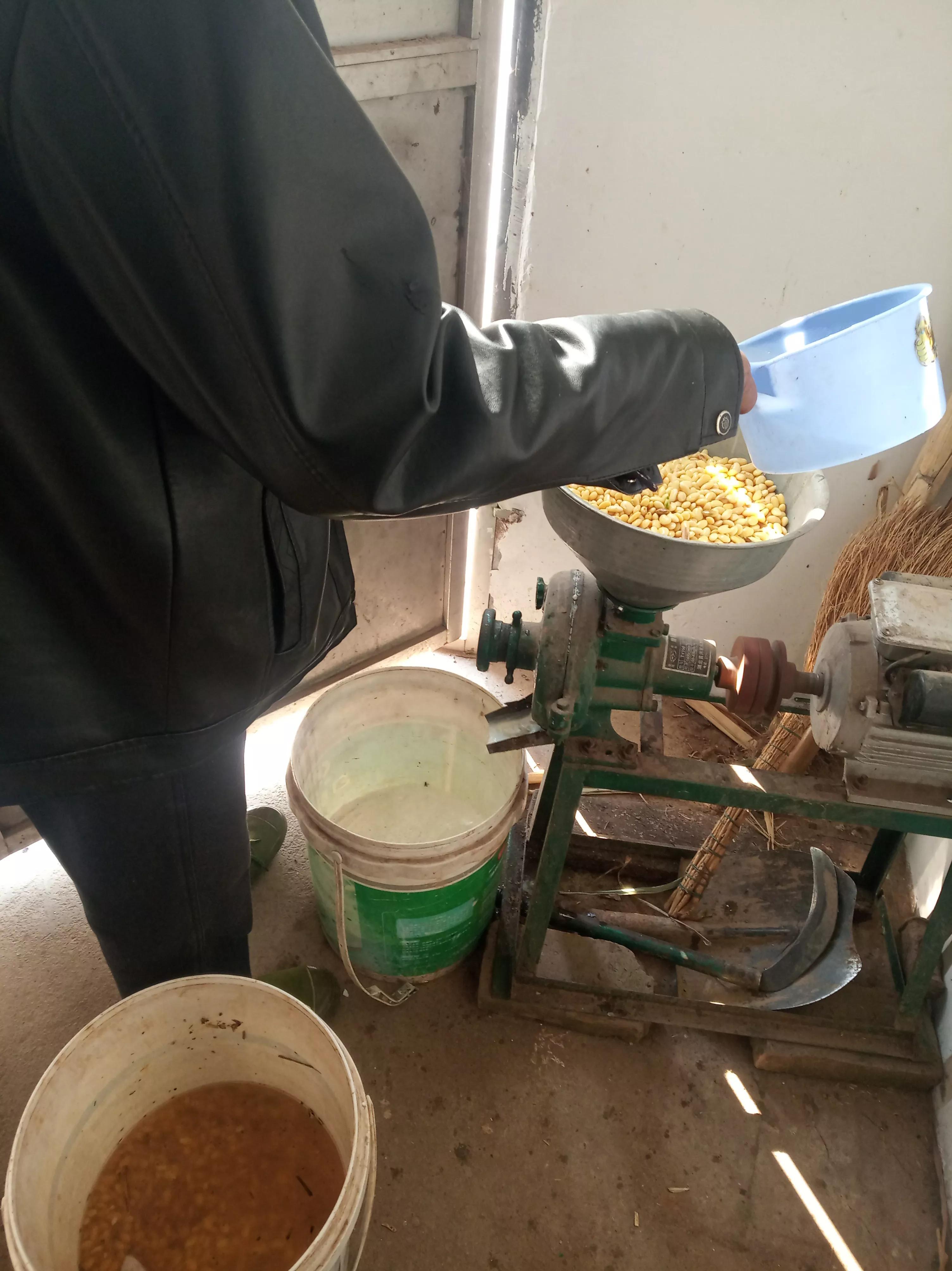 低温给小龙虾投喂豆浆和豆粕到底需不需要煮熟?