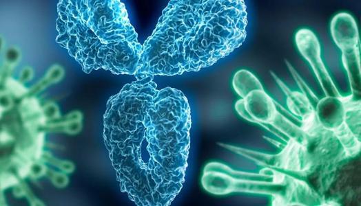 如果此次的冠状病毒不采取任何措施会如何发展?