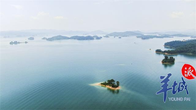 航拍广东之河源:客家古邑,万绿河源