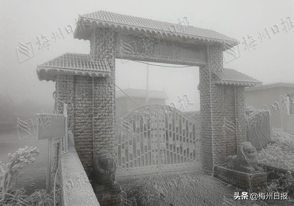 """美景""""冻""""人!广东梅州今天的雾凇奇观像仙境:八乡山,铜鼓峰"""