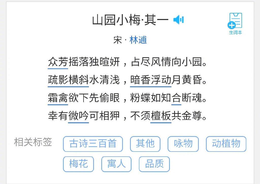 江疏影被韩国人碰瓷,称盗用韩名姜素英,网友:偷完文化来偷人?