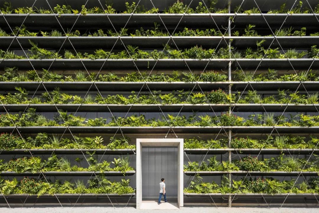 越南雅各布工厂,绳网树墙的生产空间