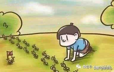 暑假观察<a href=http://www.xuexixinxi.com/zuowen/ target=_blank class=infotextkey>作文</a>范文20篇