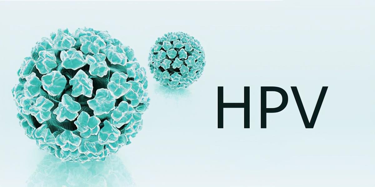 男性不用打?超过25岁再打就没用了?关于HPV疫苗,这些知识要了解