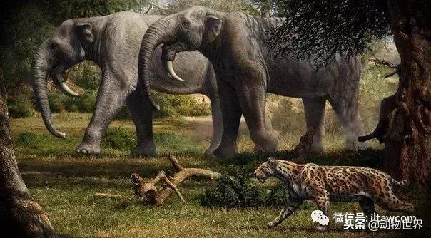 远古巨兽-恐象