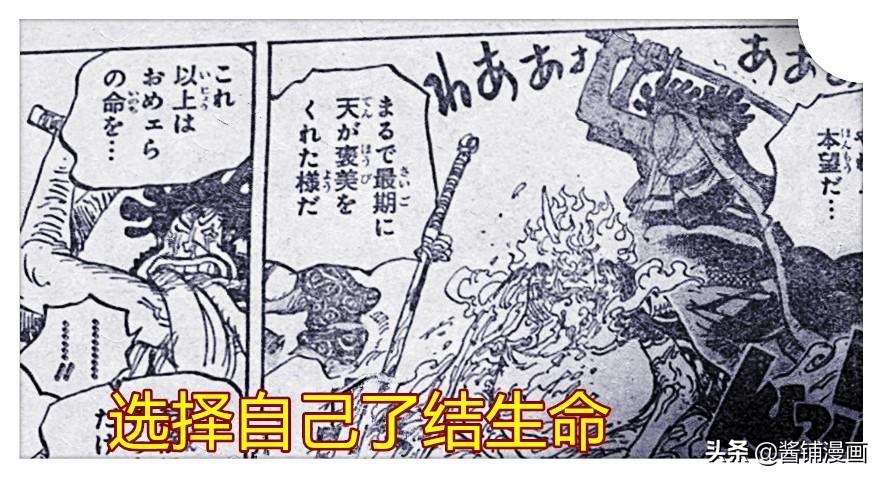 海賊王1006話,豹五郎變身不動明王,秒掉凱多的最強武士布袋
