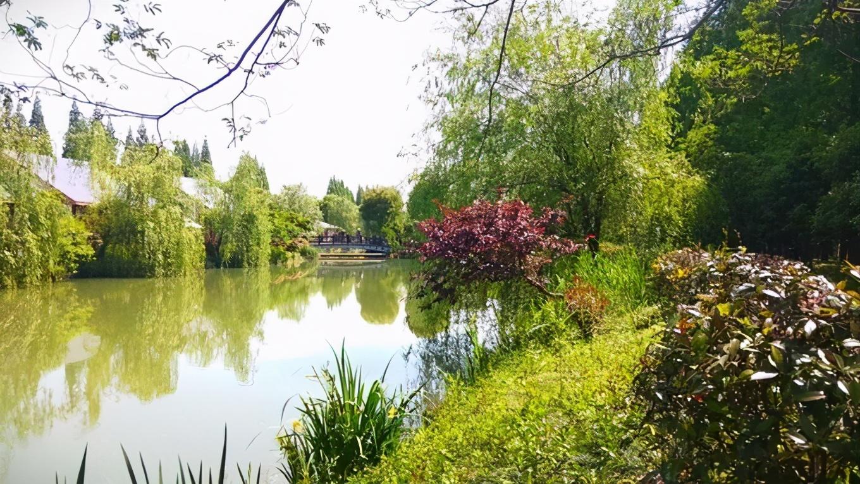 """苏州""""第一大""""县级市,总面积1264平方千米,被誉为江南福地"""