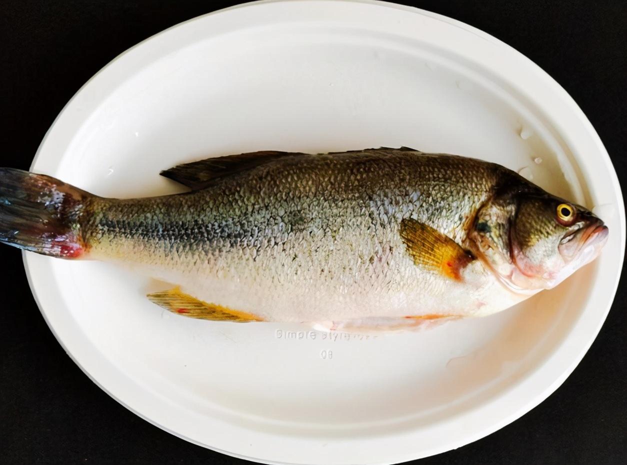 無論蒸哪種魚,都不要放鹽! 很多人一直弄錯,難怪魚肉不香不嫩