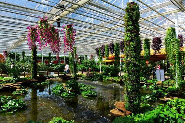 玻璃温室相对比其它蔬菜大棚的优点是什么?一亩地大棚造价