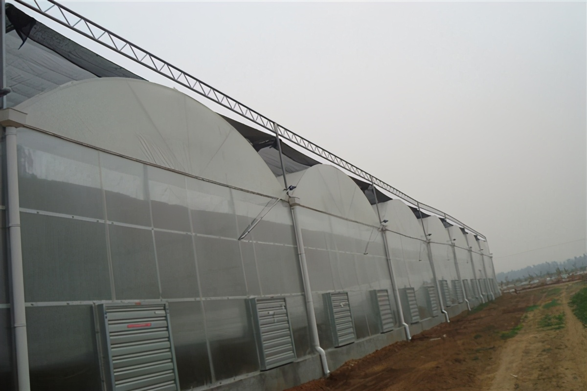 溫室大棚物聯網系統方案