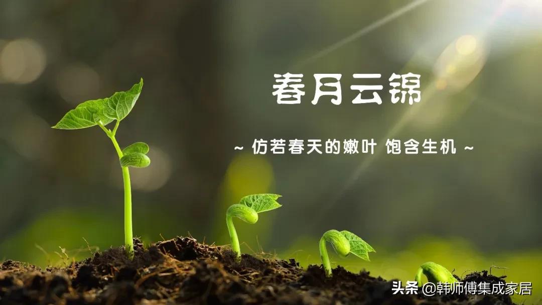 """专注 · 品质   韩师傅新品,从""""春""""开始(一)"""