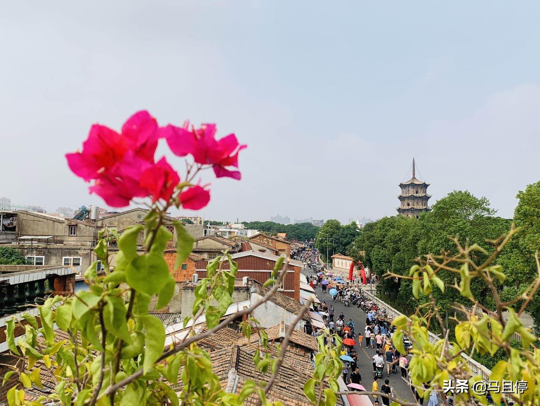 距厦门仅60分钟车程,藏着2700年古城,景点丰富且大都免费