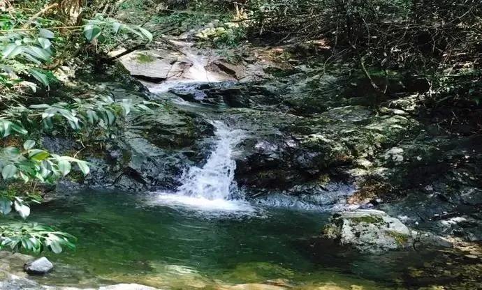浙西的秘境山水打包送给你,这条自驾路线夏天去正好