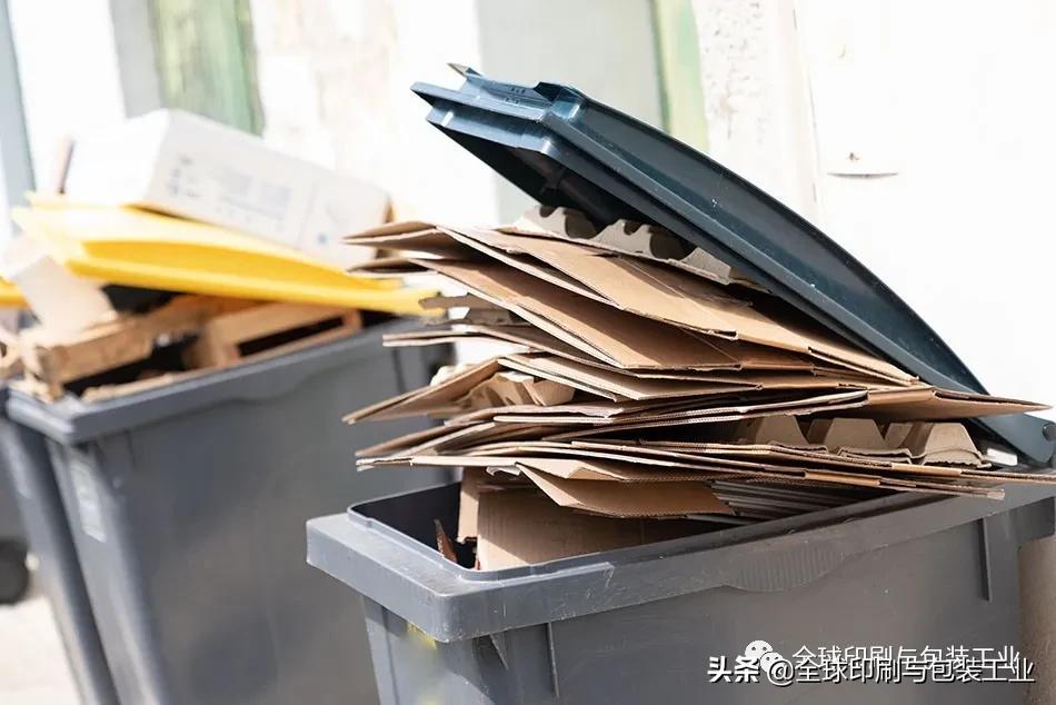 世界各大纸包装巨头一致看好废纸市场,中国仍占主导地位