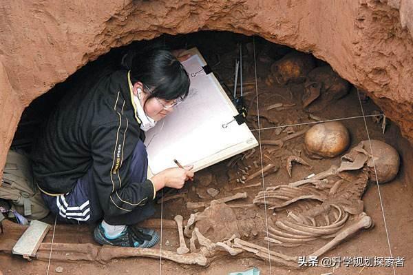 考古學近期引起關注,該省屬211高校隔年招生僅20人,就業有保障