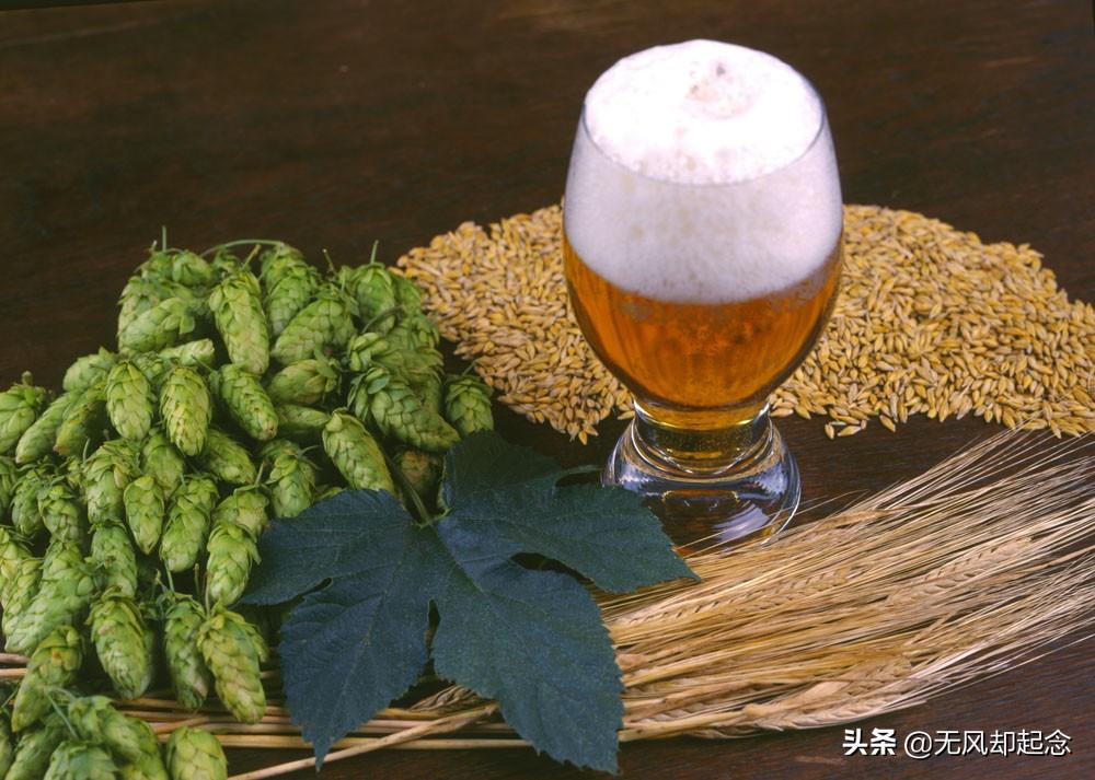 中国最赚钱的啤酒公司,有百年历史,一年赚走上千亿,比茅台还高