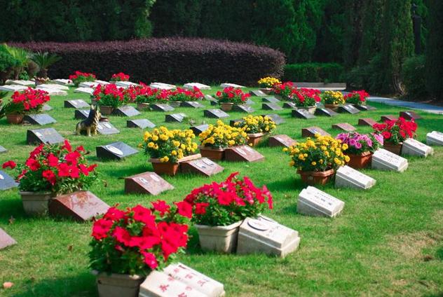 卖墓地竟比房地产还暴利,上市公司福寿园毛利率吊打万科碧桂园