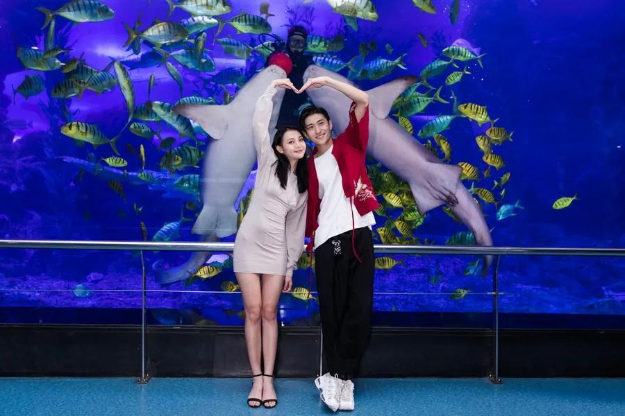 """你好,""""李焕英""""们 !青岛海底世界""""女神节""""倾情上映!"""