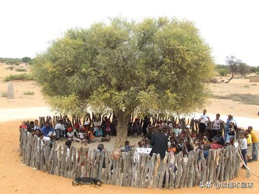 非洲内陆国博茨瓦纳,创造经济奇迹的秘诀是什么?