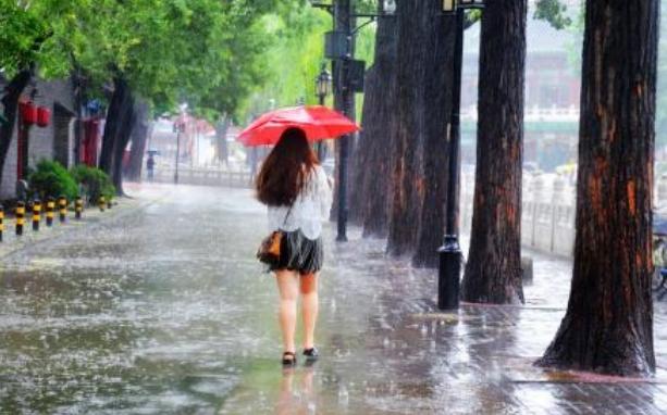 那年淋过的大雨