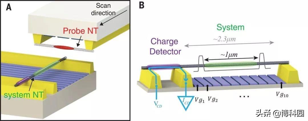 """85年前预测的""""量子晶体""""终于被看见了"""