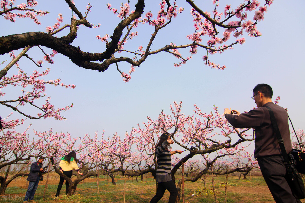 襄阳市区有六个城区,哪个城区最宜居呢?