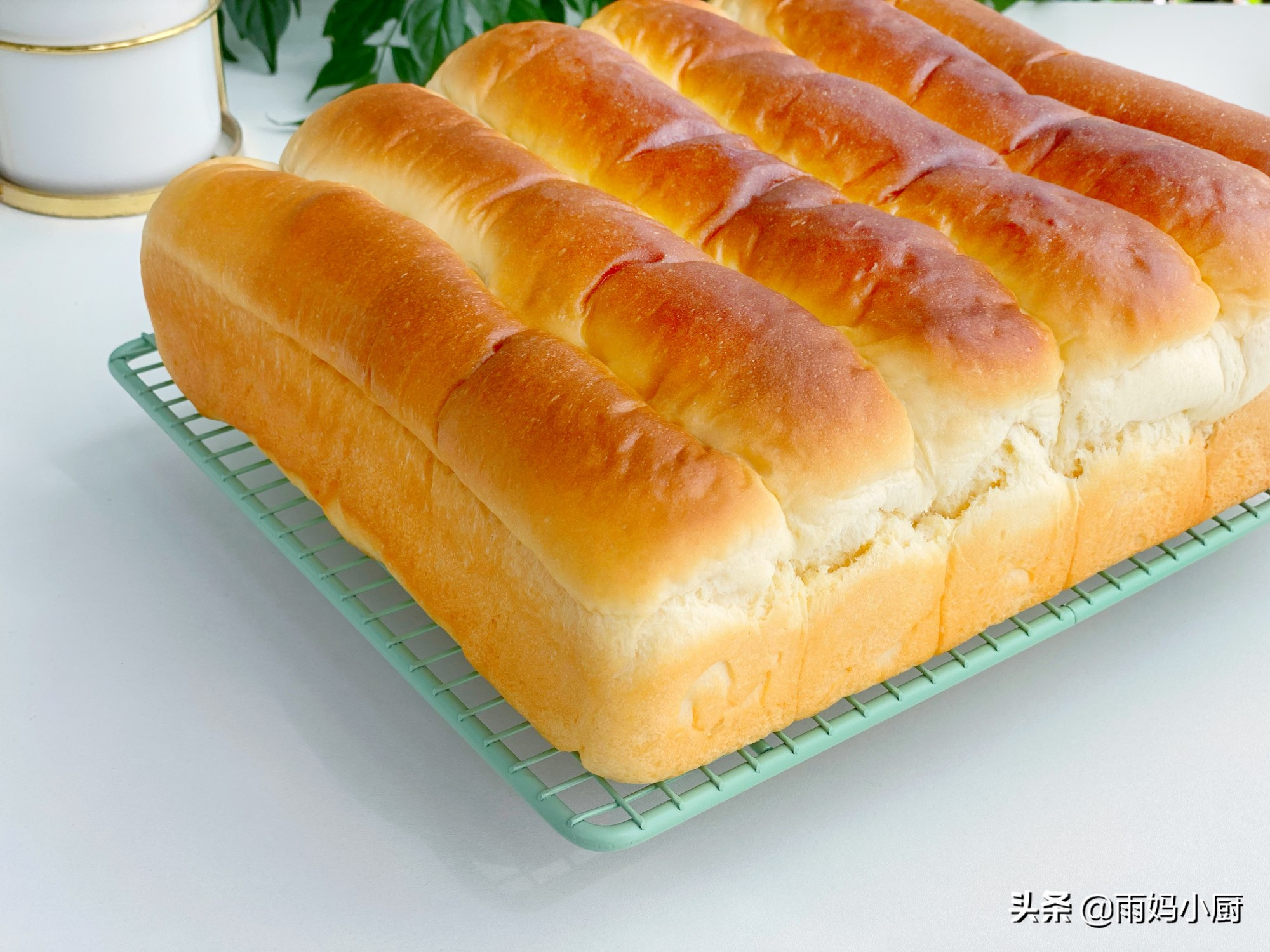 做过的面包里,最松软的就是奶排包,组织细腻又拉丝奶香味十足