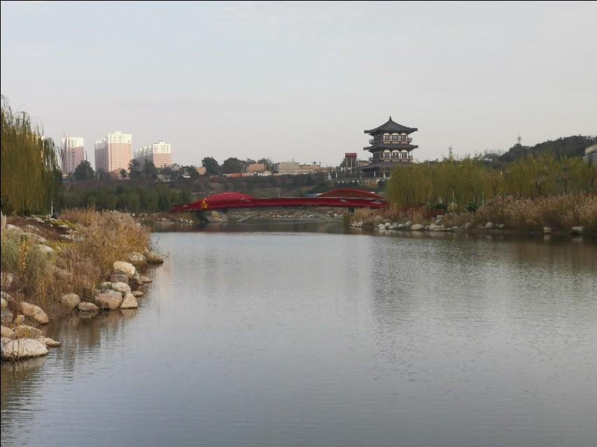 渭南南湖公园,休闲娱乐打卡:赏水光天色,亭阁廊道,河苇鱼鸟